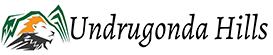 Undrugonda-Tourism